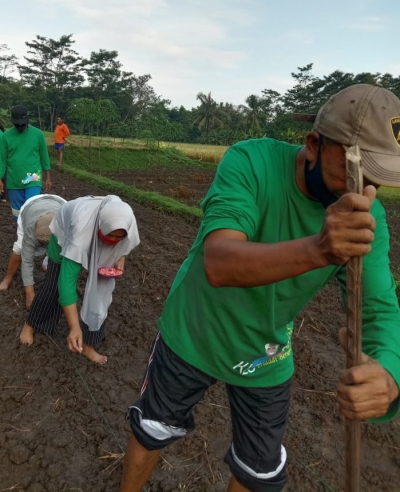 Increase Immunity During a Pandemic by Farming in Intergenerational Gardens